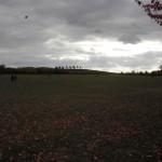 Herbststimmung auf dem Kronsberg