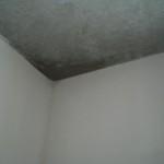 Eine gute alte bekannte: Feuchte Ecke im OG-Zimmer zum Garten hinaus (generell ist es noch immer ziemlich feucht im Haus)
