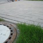Ungleichmäßiges Pflaster des Stellplatzes (links im Bild)