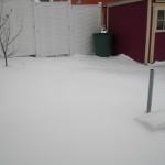 Schneelandschaft im Garten