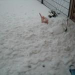 Die unberührte Schneeschicht ist dank Dachlawine dahin