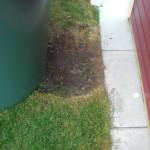 Die Tonne zeigt wie man Rasen zu Erde macht