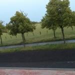Blick nach links: Auch bei der linken (auf diesem Foto leider etwas schwer zu erkennenden) Entwässerungsaussparung ist nichts zu sehen