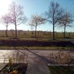 Und so sieht es aus, wenn man zur Haustür rauskommt - auch die Bäume beginnen zu blühen